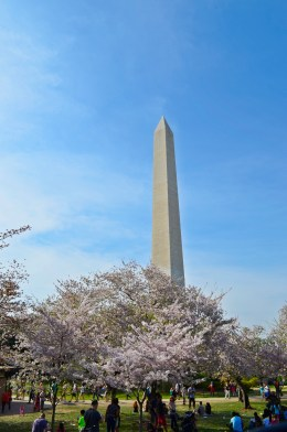 experiencias-de-viagens-washington-dc-monument