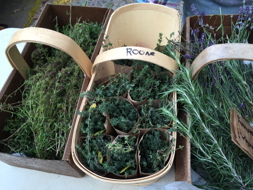 Farmers Market – Organic Produce