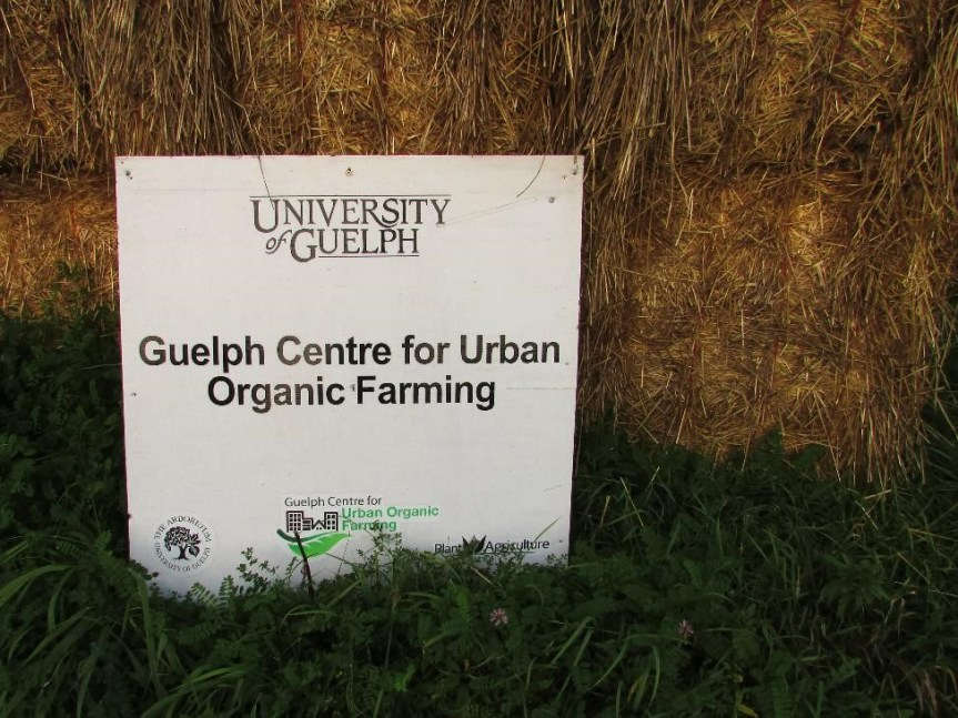 Guelph Center for Urban Organic Farming