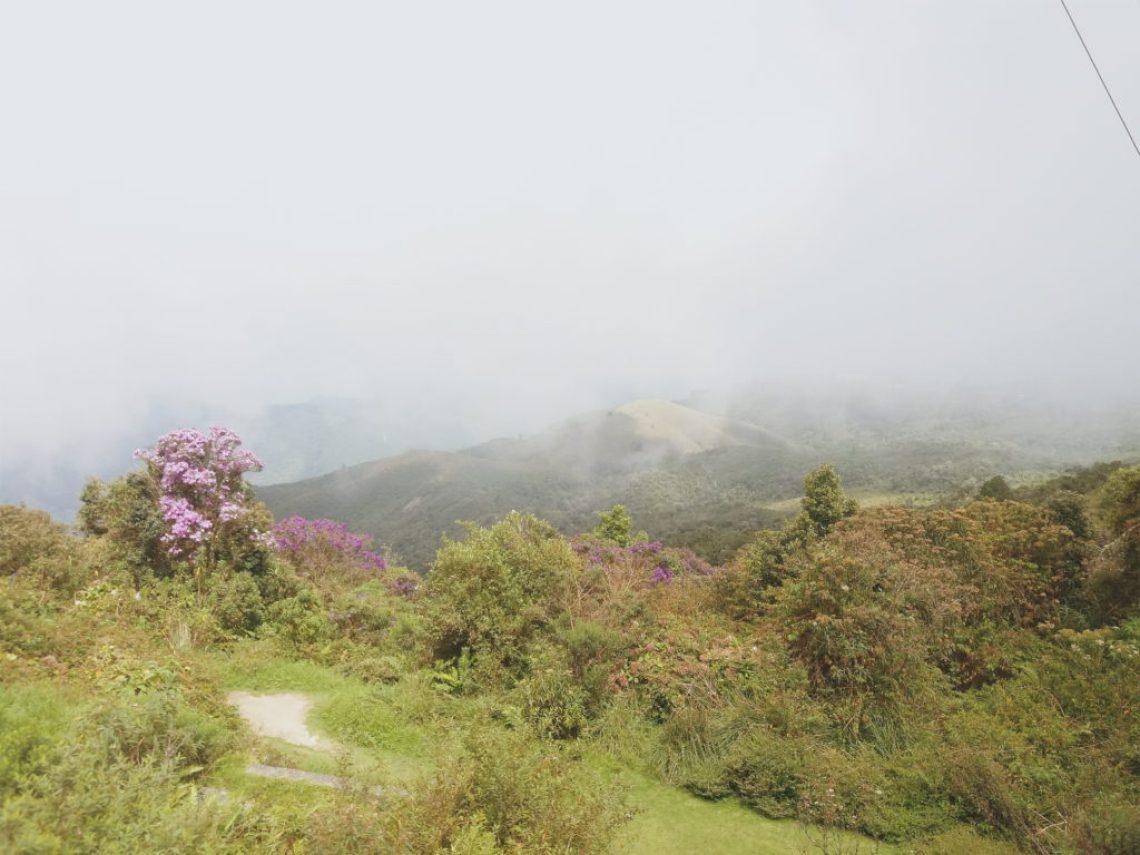 Pico do Itapeva em Campos do Jordão
