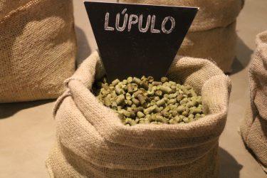 lupulo-ambev-cervejaria-jaguariuna-skol-brahma-antartica-serra-malte-colorado-cerveja-cervejaria
