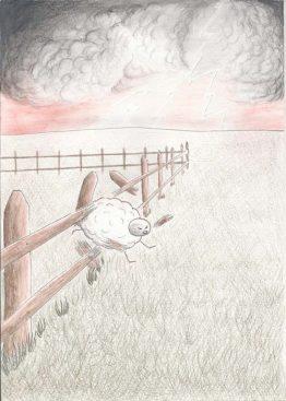 mouton-colère_petit