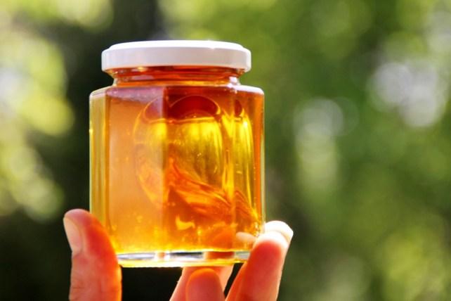 Ein Glas voll goldenem Löwenzahnhonig wird gegen das Licht gehalten