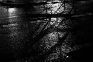 © Verena Fischer 2013