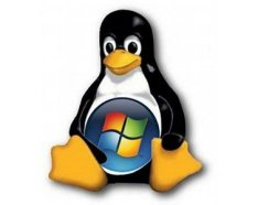 microsoft_linux_windows_penguin