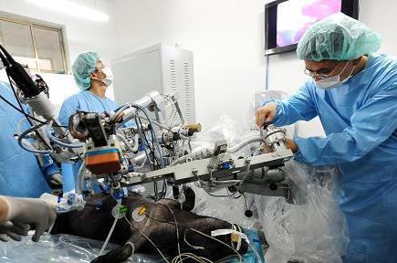 Создан первый китайский микрохирургический робот