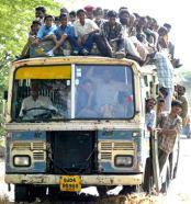indianbus