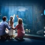 Samsung сообщает о проведении новой акции для покупателей телевизоров Samsung Smart TV