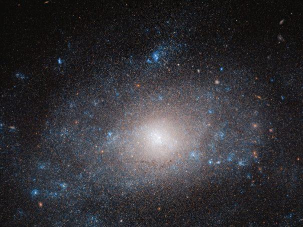 галактика NGC 5585