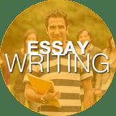essay writing service