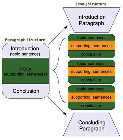 Structure of an assignment