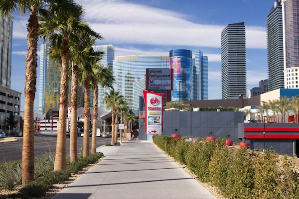 Photo of a city street with palm trees on the left and skyscrapers on the right, demonstrating the use of vertical lines in photography composition