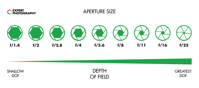 Digram showing the the f/stop scale for better understanding of photography for beginners