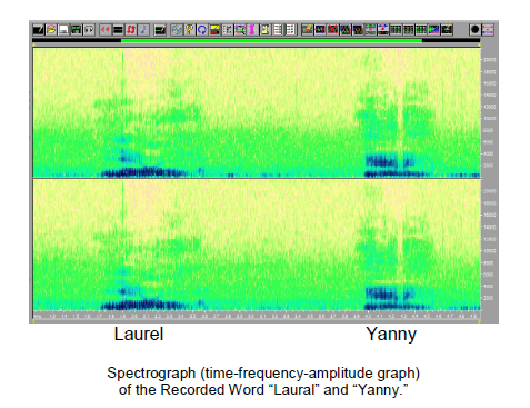 laurel-yanny-graph-2.PNG