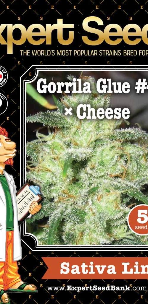 Gorrila Glue #4 × Cheese