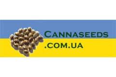 Canna Seeds