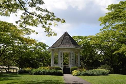 singapore-botanic-gardens-48-hours