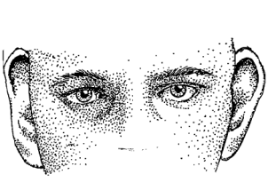 Eyes, ears and nose. Key elements of awareness.