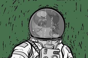 studiostoks stock illustration modified HM