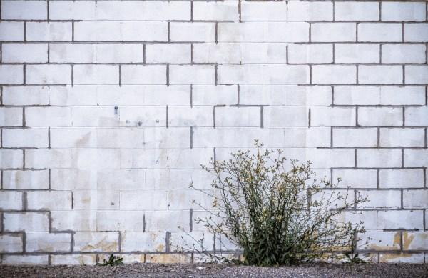 White Wall I. Syracuse, NY. July 2016.