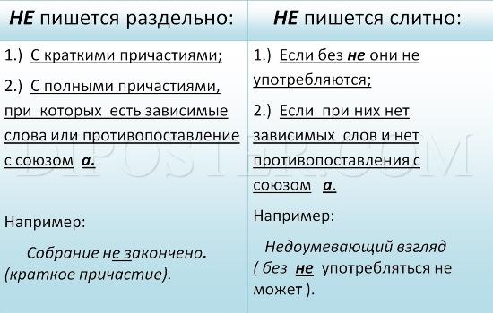 Когда «не» пишется слитно   Expirience.ru