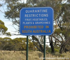 Quarantine restrictions when crossing the state border to South Australia (Photo: Jan Haenraets, 2012).