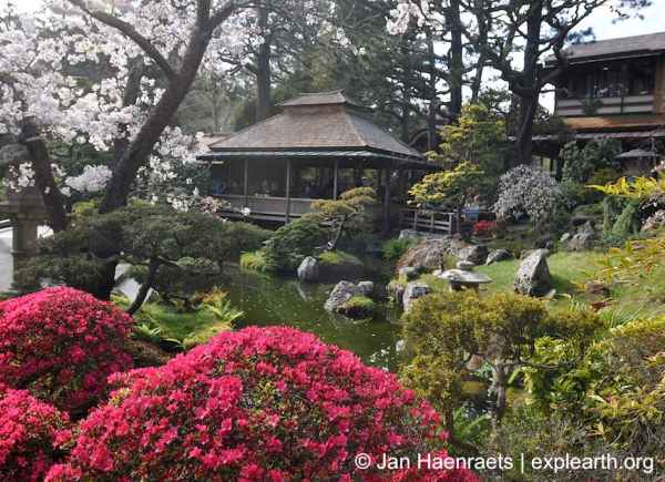 The Japanese Tea Garden, San Francisco  (Photo: Jan Haenraets, 2013).