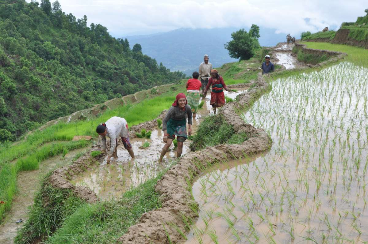 After the Earthquake, Gorkha, Nepal