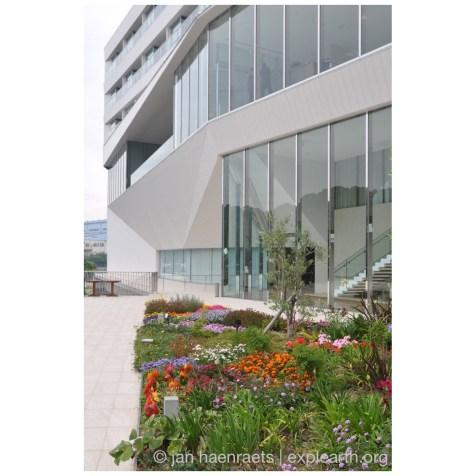 Olive Bay Hotel06