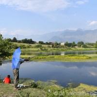 Saving The Green City: Srinagar, Kashmir