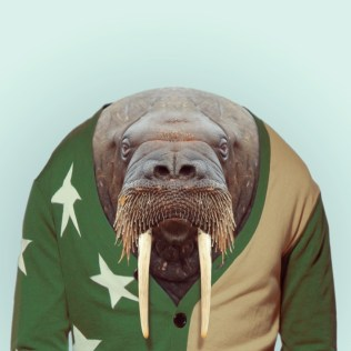 Zoo-Portraits-Yago-Partal-explicark19