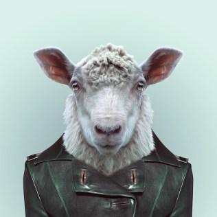 Zoo-Portraits-Yago-Partal-explicark30