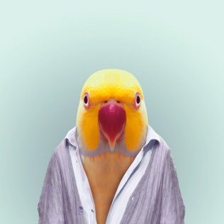Zoo-Portraits-Yago-Partal-explicark41
