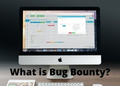What Is Bug Bounty?