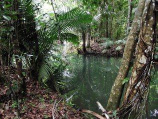 Sendero Rio Socoa