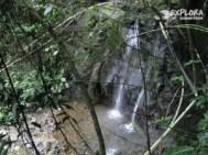 img 5953 300x225 Rainforest Eco Tours