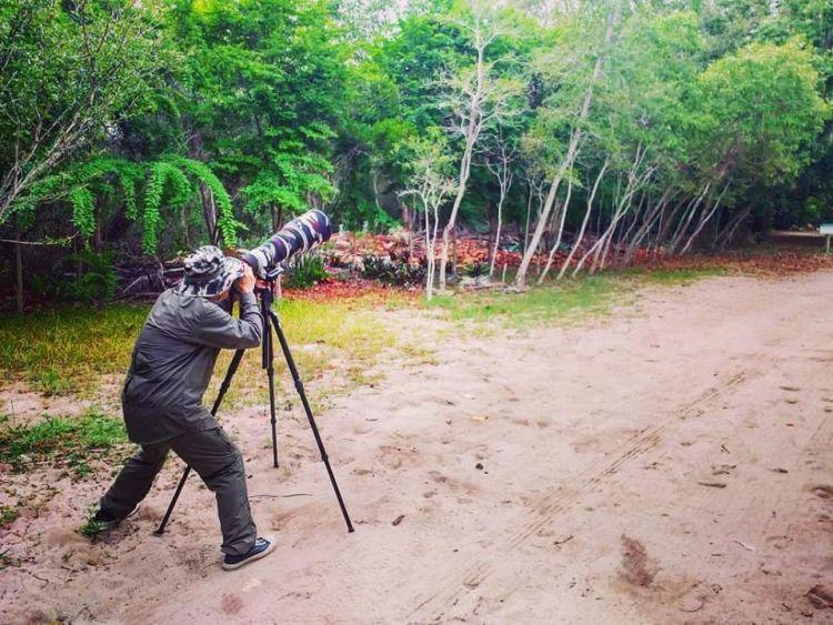 Endemics Birding Tour Dominican Republic