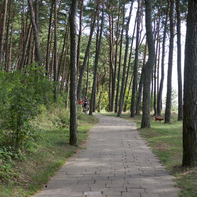 Curonian Spit Lithuania