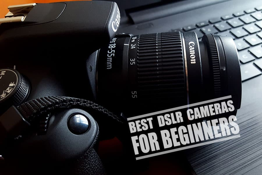 What is The Best DSLR Camera for Beginners? Reviews & Guide