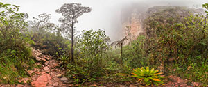 Mount Roraima Trek, Hike to the Summit