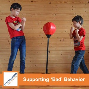 Supporting Bad Behavior