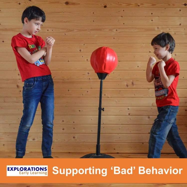 "Supporting ""Bad"" Behavior"