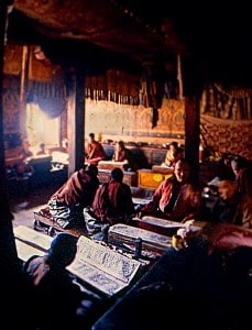 buddist monks reading the holy books