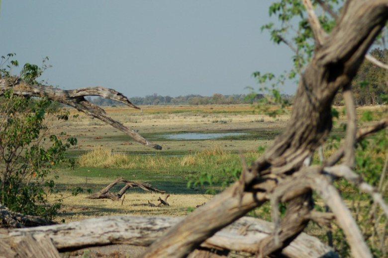 Moremi Botswana - ExplorationVacation - 09-21_01-06-04
