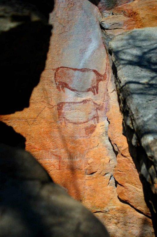 Tsodilo Hills Botswana - ExplorationVacation - 2005-09-16_large rino drawing