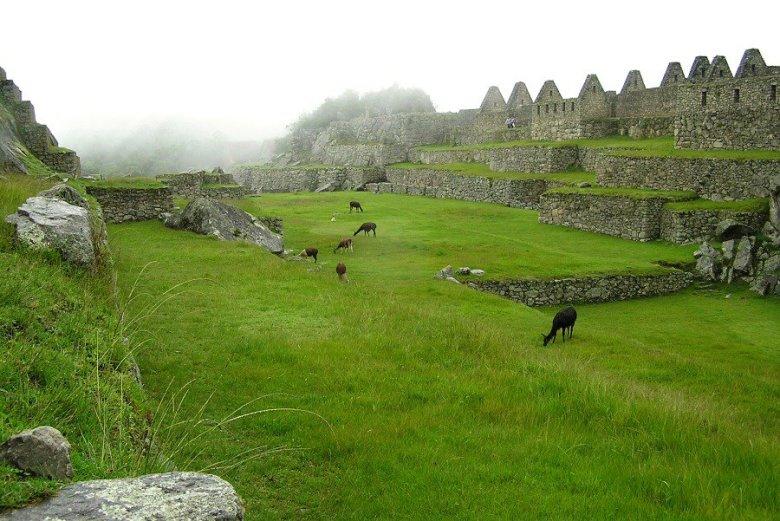 Machu Picchu Peru - ExplorationVacation P1010055_0