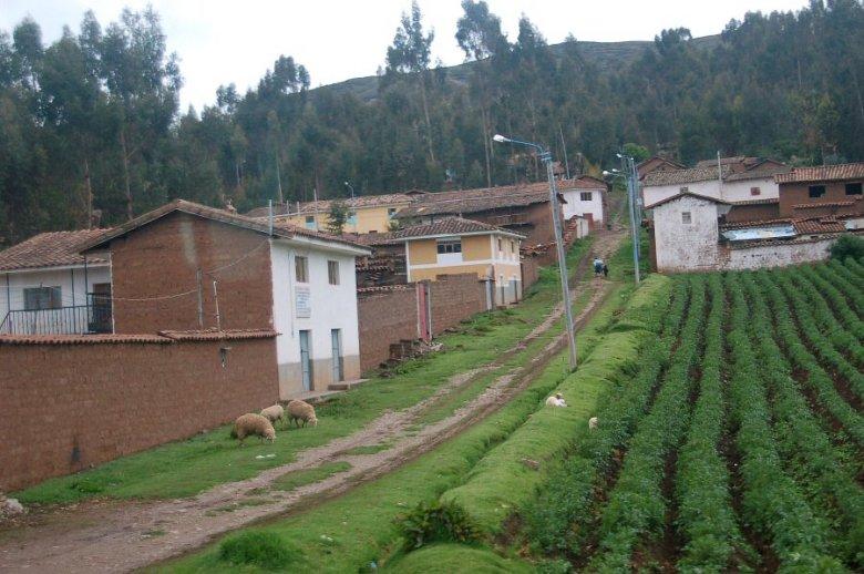 Peru - ExplorationVacation 2005-12-30_09_42_59