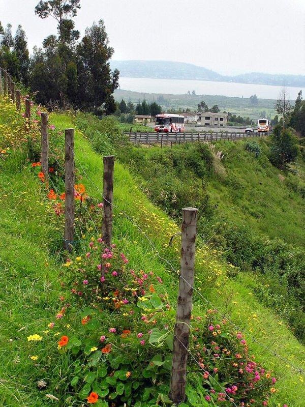 P1010058 lookout for Imbabura Volcano and San Pablo lake