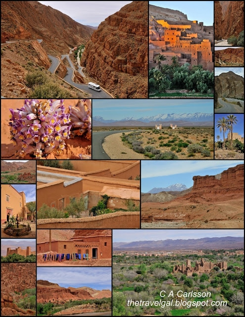 kashbahs, collage of flowers, and desert scenery