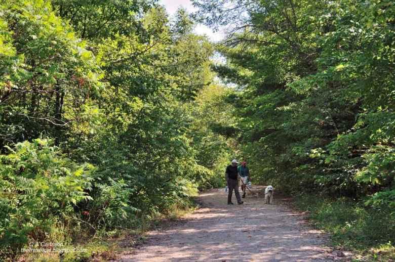 14-leech lake 12 DSC_5277 walking in the woods in Minnesota